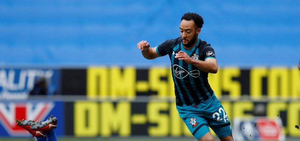 Southampton fans enjoyed Nathan Redmond's impact from subs bench on Sunday