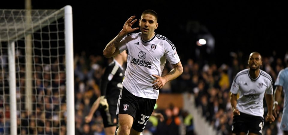 Revealed: 75% of Chelsea fans would support a move for Aleksandar Mitrovic