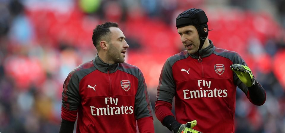 Revealed: 52% of Arsenal fans would prefer Cech to leave than Ospina