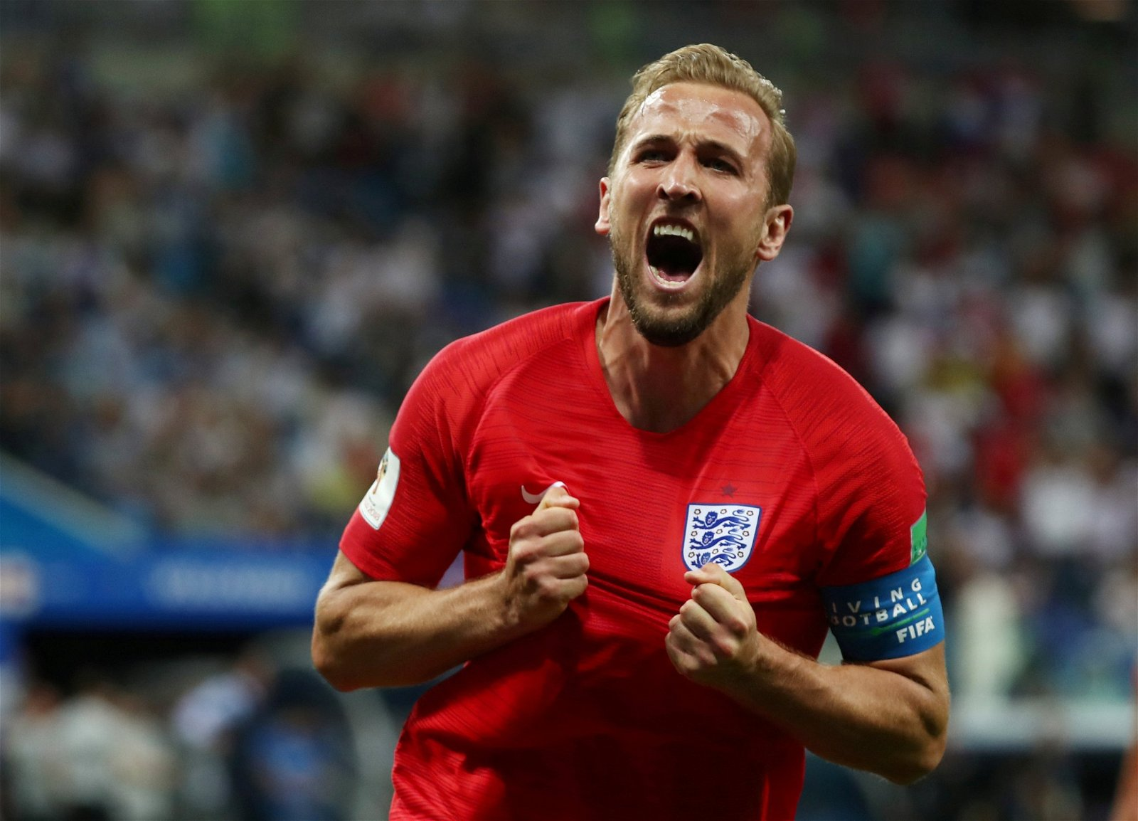 Harry Kane celebrates scoring the winner against Tunisia