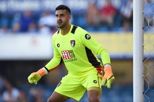 Adam Federici would be a safe pair of hands for Stoke