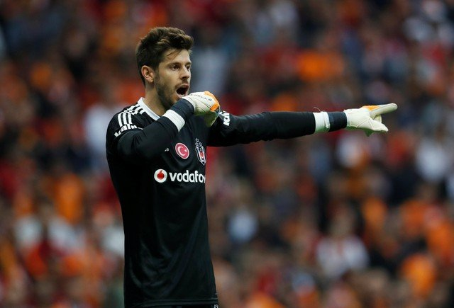 Fabri will provide healthy competition for Fulham next season