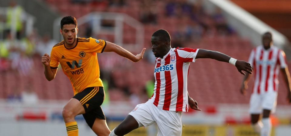 Powerful N'Diaye could add extra steel to Everton's midfield as long as he's consistent