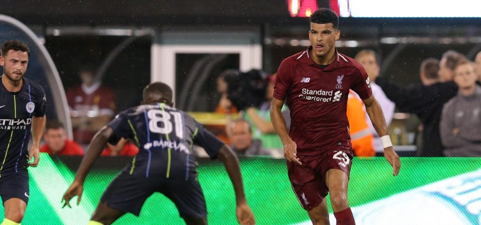 Revealed: Most Liverpool fans not keen on sending Solanke to another Premier League club