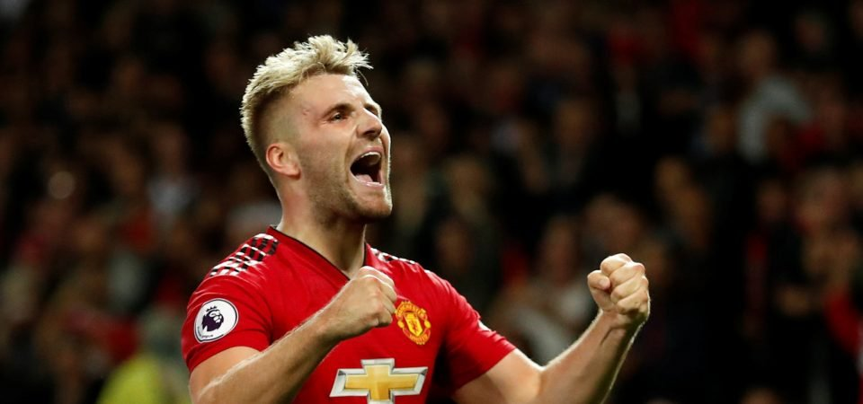 Manchester United's Luke Shaw takes to Instagram to share brilliant painting