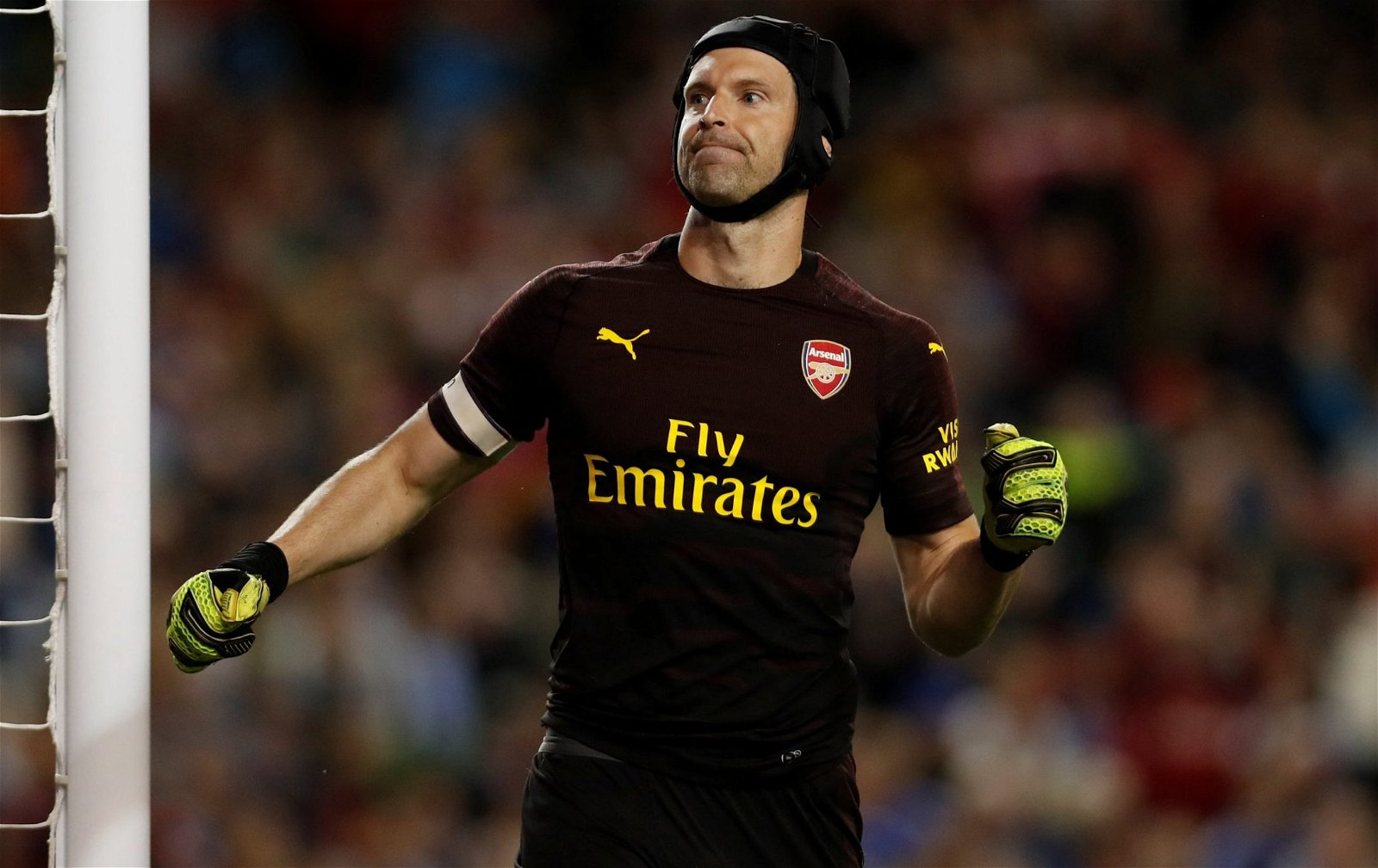 Petr Cech - Arsenal goalkeeper