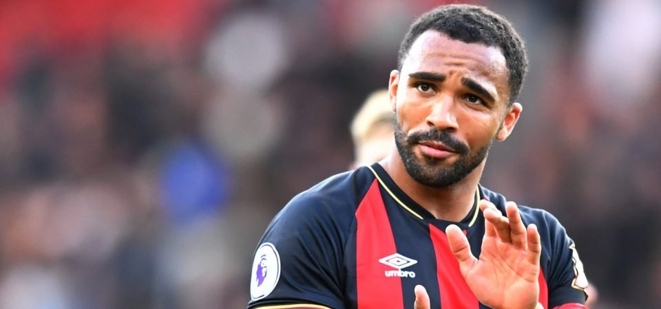 Bournemouth fans react excitedly as Callum Wilson receives first ever England call up