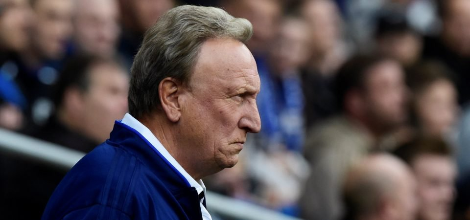 The Chalkboard: Why Cardiff City can survive in the Premier League