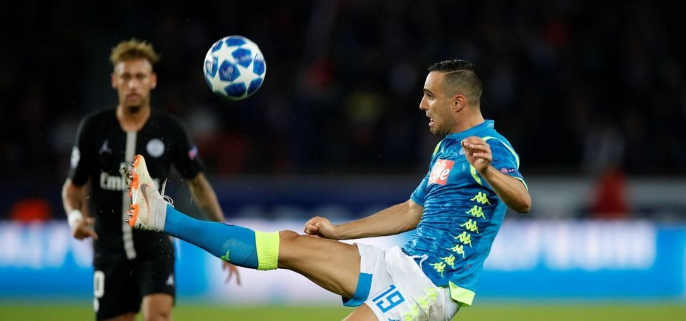 Nikola Maksimovic could be the centre-back to replace Toby Alderwerield at Tottenham