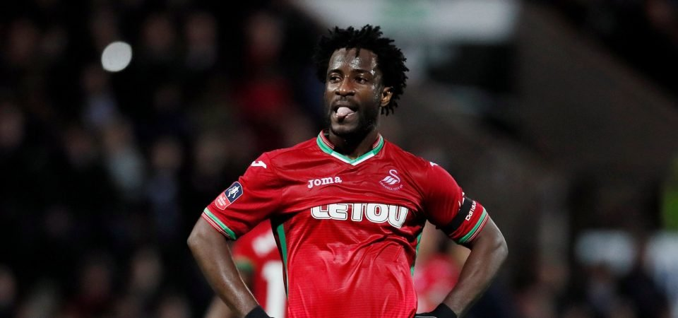 Swansea fans delighted as Wilfried Bony is declared fit again