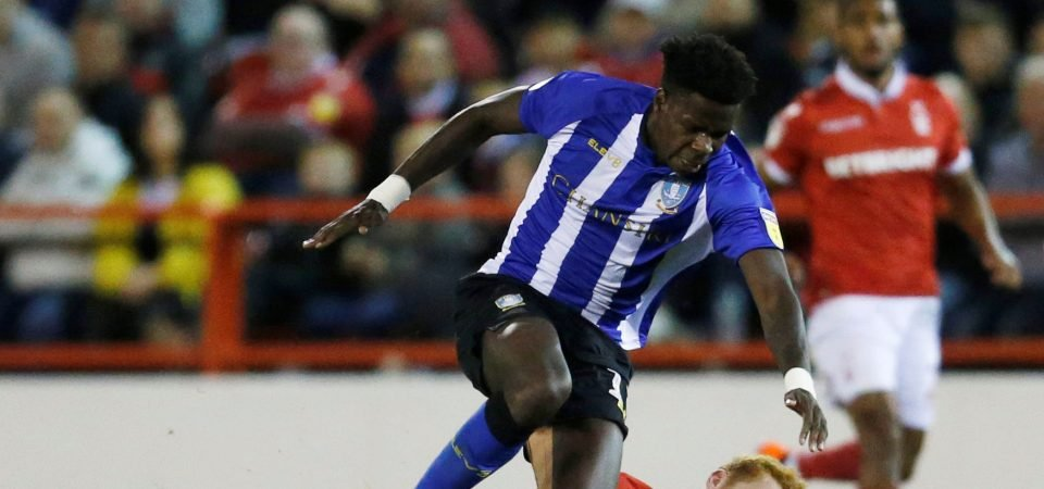 Sheffield Wednesday can't afford to lose Joao despite Hooper's return