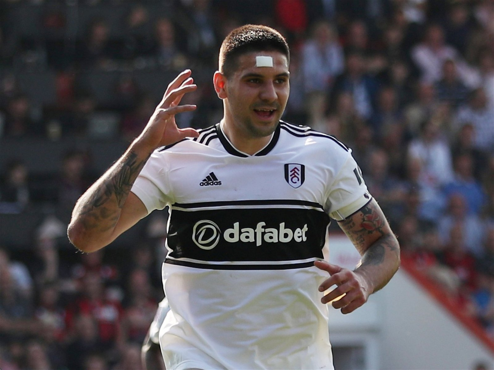 Aleksandar Mitrovic Spurs - Forget Mitrovic and Zapata: Palace could replace Benteke with shrewd £15m swoop - opinion