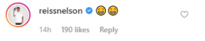 nelson comment 300x60 - Demarai Gray and Reiss Nelson respond to Man City star on Instagram