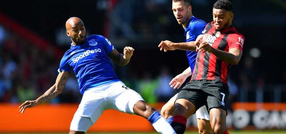 Everton's Fabian Delph has proved that he could adequately replace Idrissa Gueye