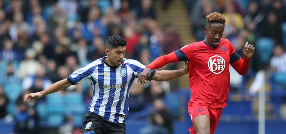 Sheffield Wednesday fans hail Massimo Luongo after goalscoring performance
