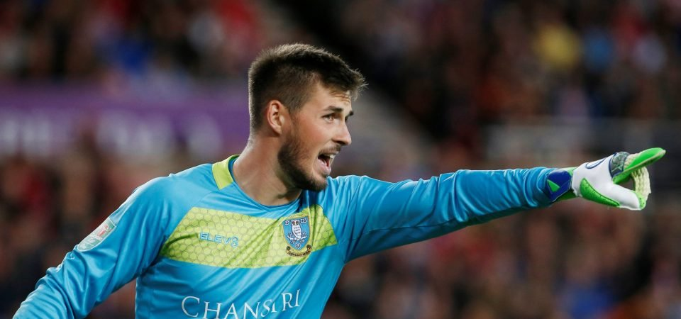 Sheffield Wednesday's goalkeeper situation won't be helped by Joe Wildsmith