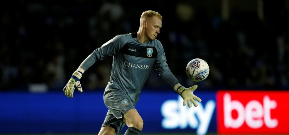 Sheffield Wednesday's Cameron Dawson should remain in goal unless injured