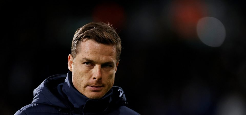 Exclusive: Pundit worries for Scott Parker and Fulham