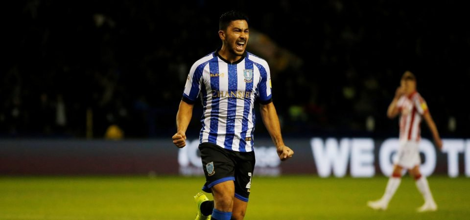 Sheffield Wednesday midfielder Massimo Luongo ruled out for season