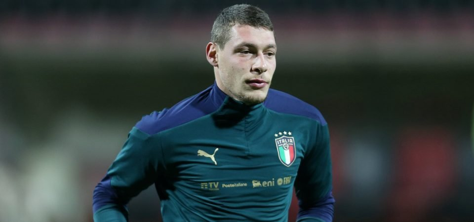 Andrea Belotti could be Spurs' ideal Harry Kane replacement