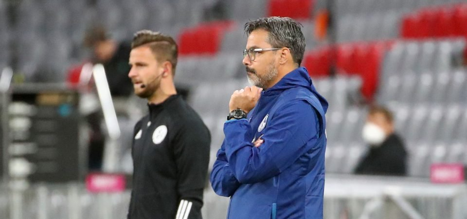 Exclusive: Palmer says David Wagner would be ideal for West Brom